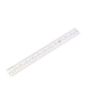 Ruler 300MM Plastic  #8801