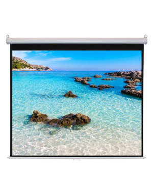 Projector Screen Manual Pull Down 70X70